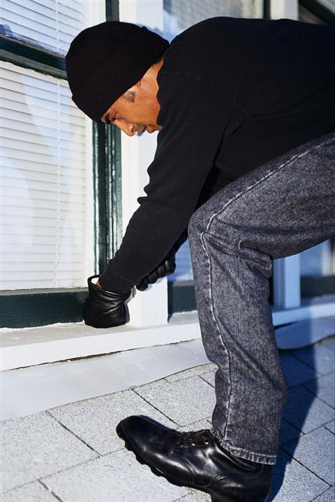 How to Prevent Housebreaking